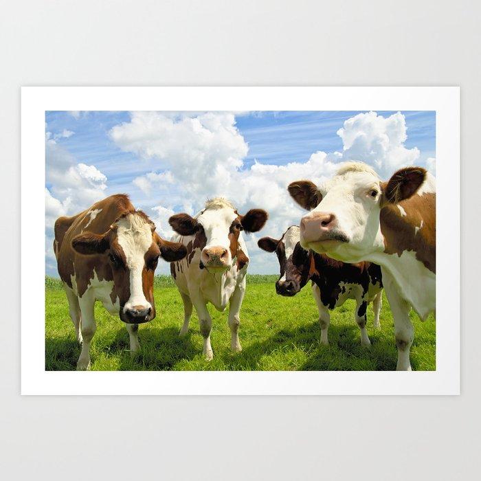 Four chatting cows Kunstdrucke