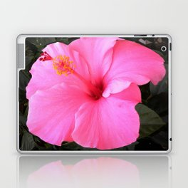 Hot pink Laptop & iPad Skin