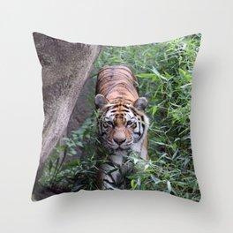 I am Stalking You Throw Pillow
