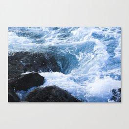 Tumble & Swirl Canvas Print