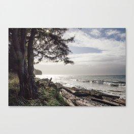 French Beach I Canvas Print