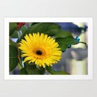 sunshine Art Prints featuring Sunshine  by IowaShots