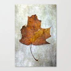 Autumn-Leaf Canvas Print