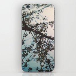 dreaming 2 iPhone Skin