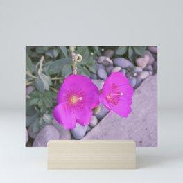 Floral Succulent Zen Garden Mini Art Print
