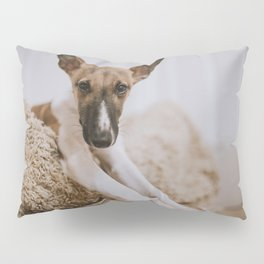Cute Puppy by Mitchell Orr Pillow Sham