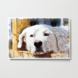 White Labrador Dog Lying Down Relaxing.  Watercolor Painting Style. Metal Print