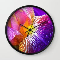 iris Wall Clocks featuring Iris by Robin Curtiss