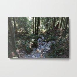 Quarry Rock Deep Cove trail 2 Metal Print