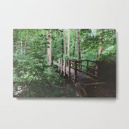 Forest Trail XXXIII Metal Print