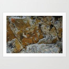 Cornish Headland Cracked Rock Texture with Lichen Art Print