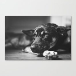 Witty Weekends. Canvas Print