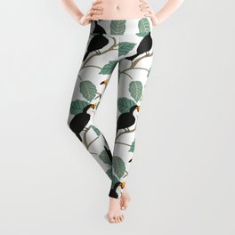 Toucan birds and palm leaves in the jungle Leggings