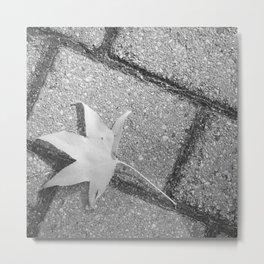 Lonley Leaf on street - Photography black & white  Metal Print