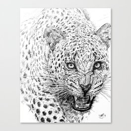 Snarl Canvas Print