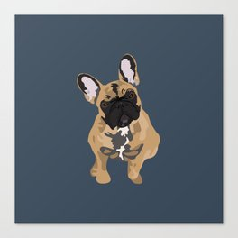 Zoey the Frenchie Canvas Print