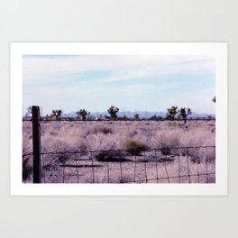 Wire Fence, Joshua Tree. 35mm Film Art Print
