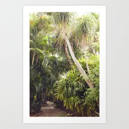 Florida Dreaming Art Print