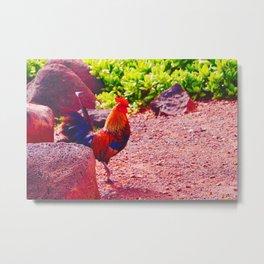 Red Rooster Metal Print