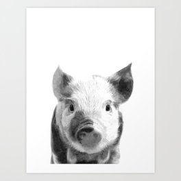 Black and white pig portrait Art Print
