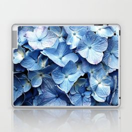 Berry Laptop & iPad Skin