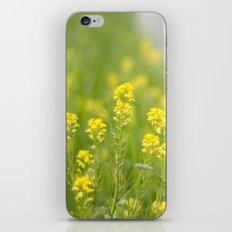 Sunny Days Ahead iPhone & iPod Skin