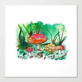 Toadstool Mushroom Fairy Land Canvas Print