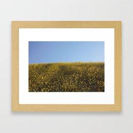 Mustard Flowers Framed Art Print