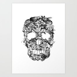 Death Nature Art Print