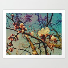 last day of sping Art Print