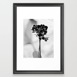 Vegetal Portrait II: Black Orchid Framed Art Print