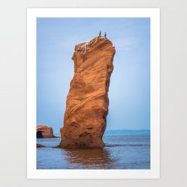 cormorants on the cliff Art Print