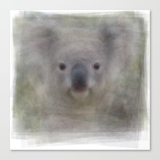 Koala Portrait Canvas Print