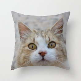 Cat by Abeer Shaheen Throw Pillow