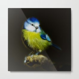 Li'l blue tit is so cute Metal Print