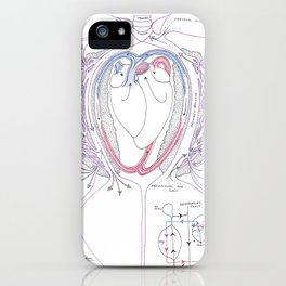 Avian Respiratory System with Heart, Colour iPhone Case