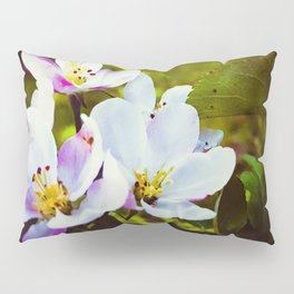 Apple Blossom Days Pillow Sham