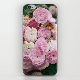 The smallest pink roses iPhone Skin