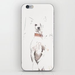 Chinese crested 25 iPhone Skin
