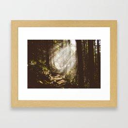 Breams  Framed Art Print