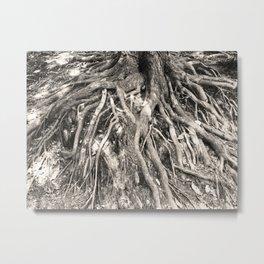 Rooted Metal Print