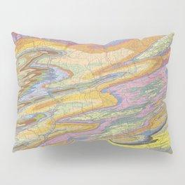 Eastern Pennsylvania (PA) Topo.luv Pillow Sham