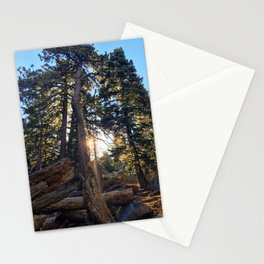 Good Morning Sunshine! Marion Mountain Trail - San Jacinto Peak - California Stationery Cards