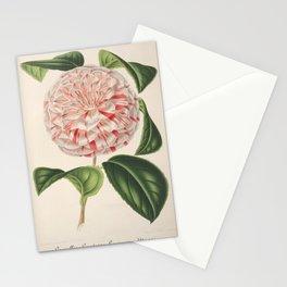 Flower camellia comtesse lavinia maggi4 Stationery Cards