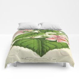 Vintage Botanical Floral Flower Plant Scientific Comforters