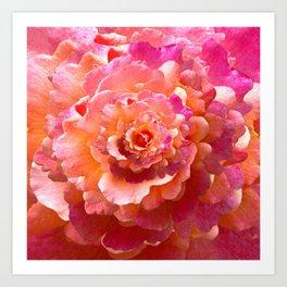 The Rose of Infinity Art Print