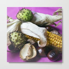 Autumnal Still Life with Chestnut and Corn Metal Print