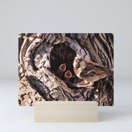 House Sparrow Keeping House Mini Art Print