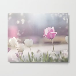 Pink Tulip Flower Photography, Tulips Floral Art, Spring Nature Nursery Photo Metal Print