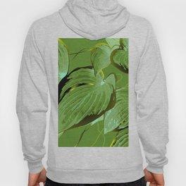 Ficus Plant 11 Hoody